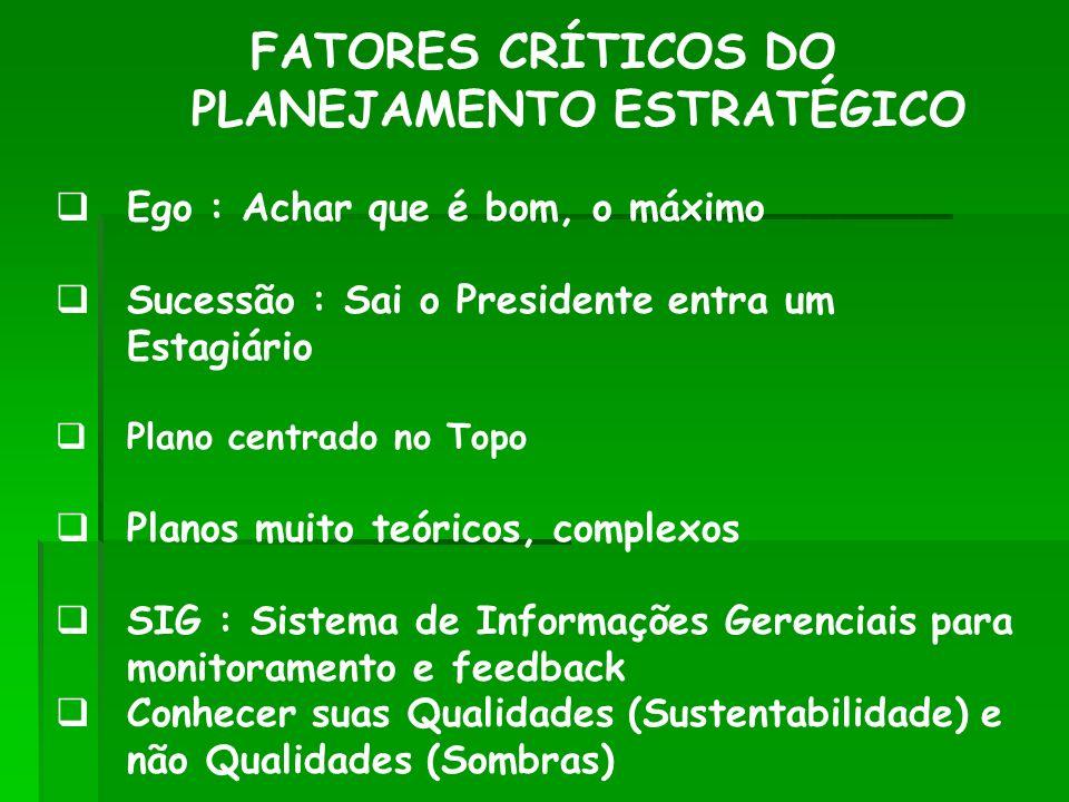FATORES CRÍTICOS DO PLANEJAMENTO ESTRATÉGICO