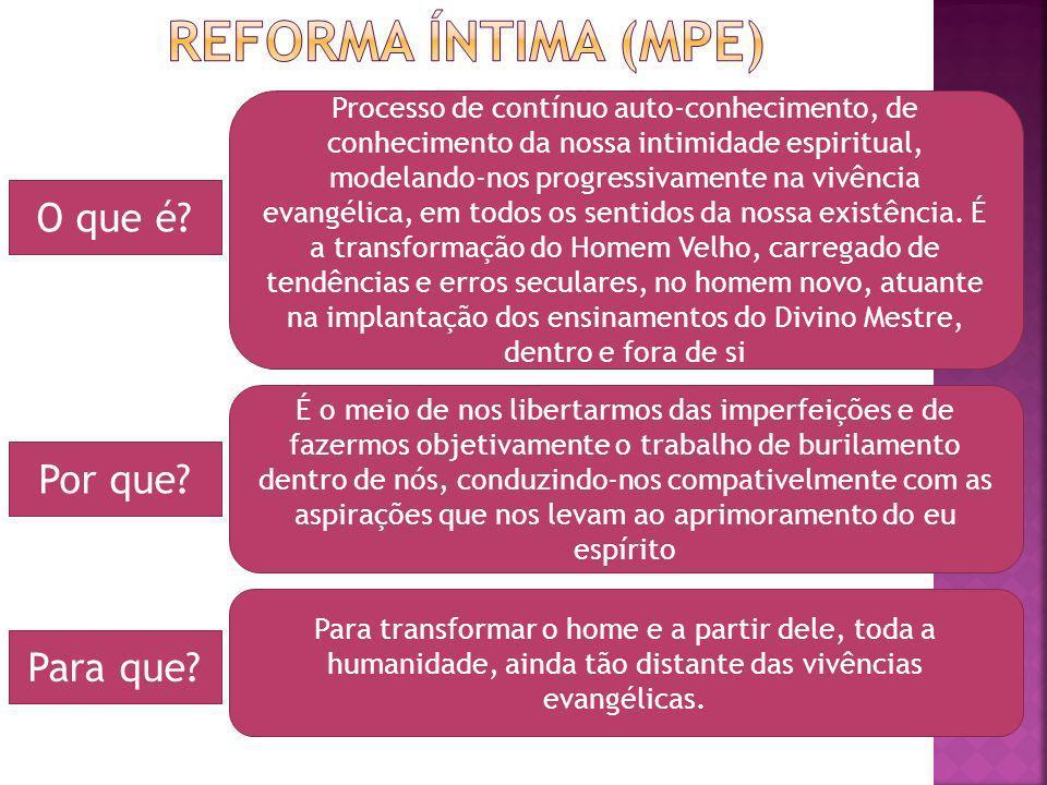 Reforma íntima (MPE) O que é Por que Para que