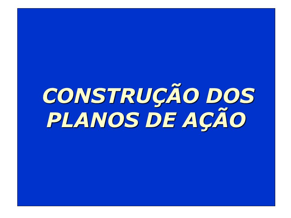 CONSTRUÇÃO DOS PLANOS DE AÇÃO