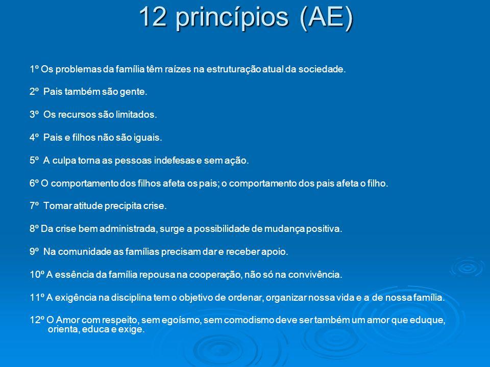 12 princípios (AE) 1º Os problemas da família têm raízes na estruturação atual da sociedade. 2º Pais também são gente.