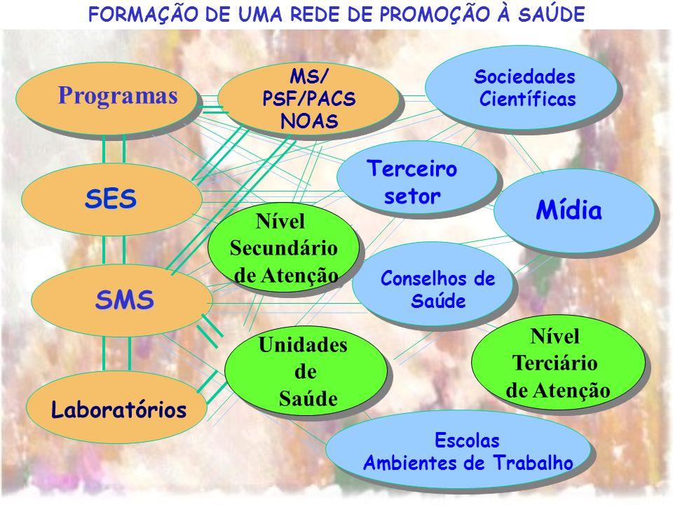 FORMAÇÃO DE UMA REDE DE PROMOÇÃO À SAÚDE