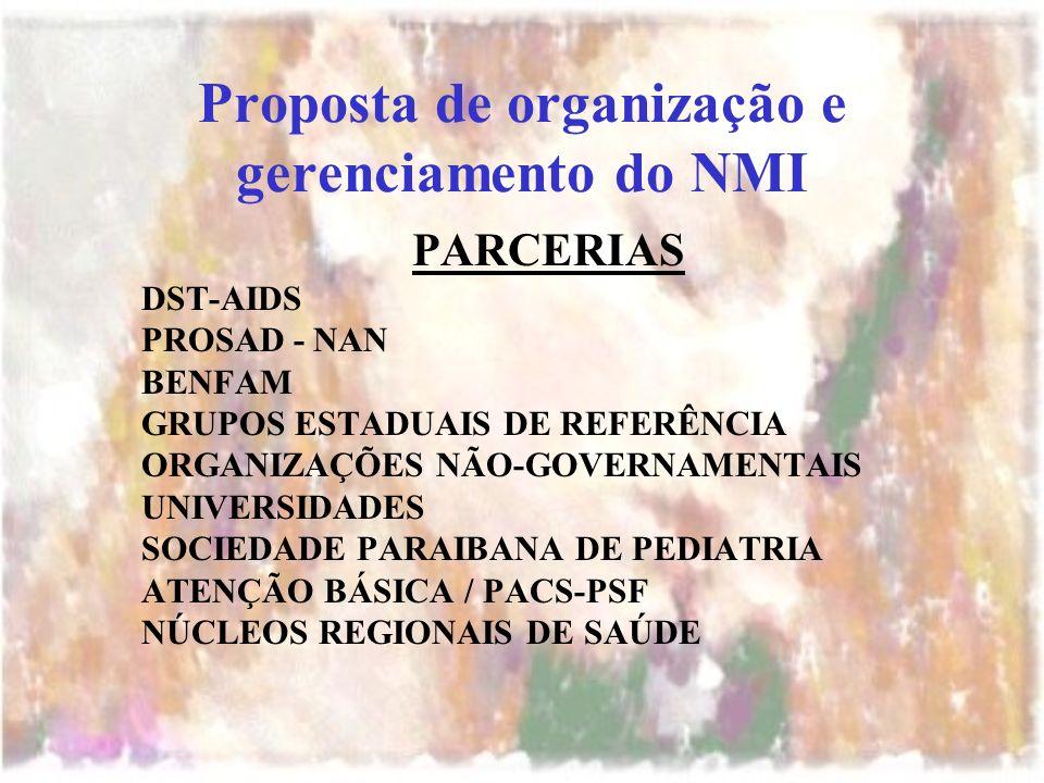 Proposta de organização e gerenciamento do NMI