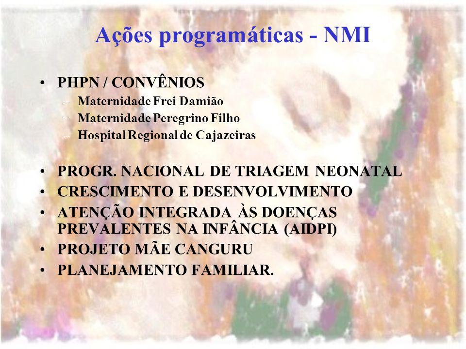 Ações programáticas - NMI