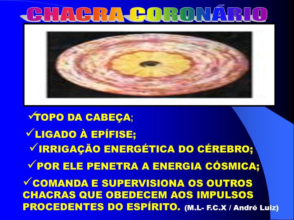 CHACRA CORONÁRIO TOPO DA CABEÇA; LIGADO À EPÍFISE;