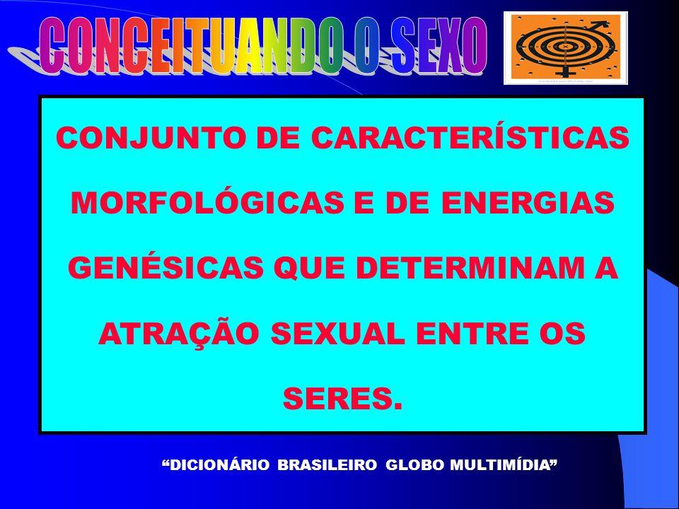 DICIONÁRIO BRASILEIRO GLOBO MULTIMÍDIA