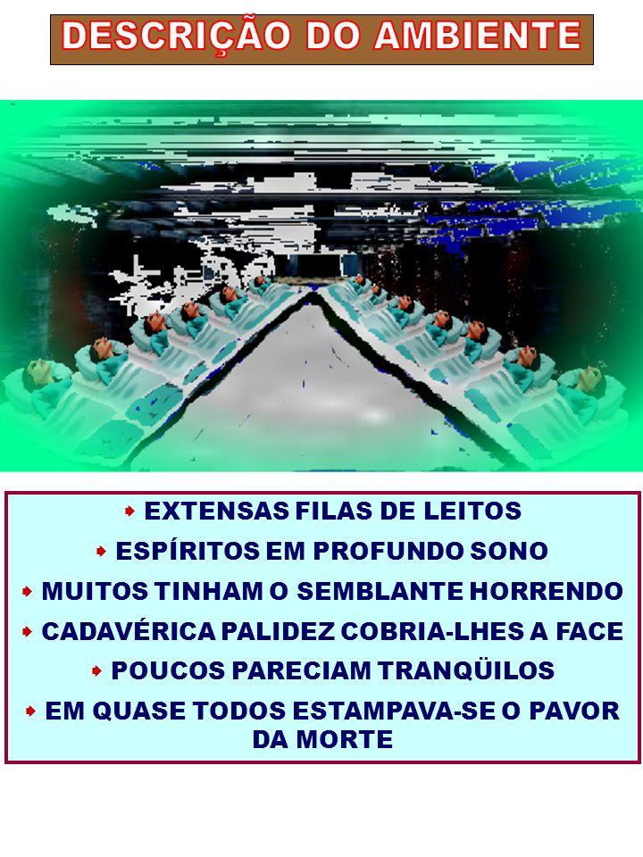 DESCRIÇÃO DO AMBIENTE  EXTENSAS FILAS DE LEITOS