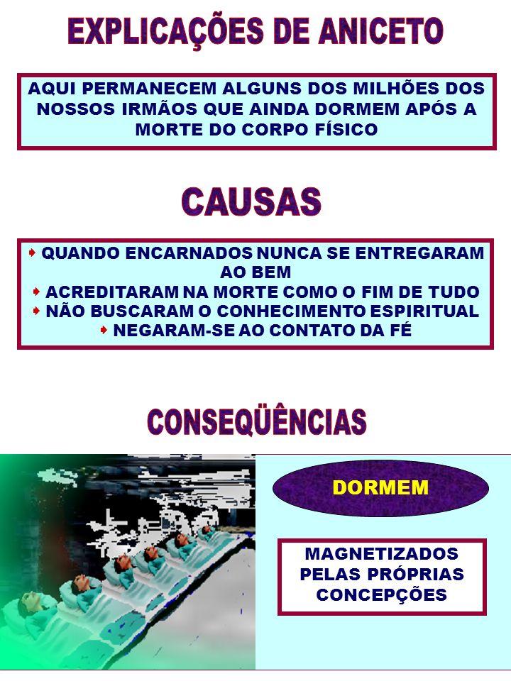 EXPLICAÇÕES DE ANICETO CAUSAS CONSEQÜÊNCIAS