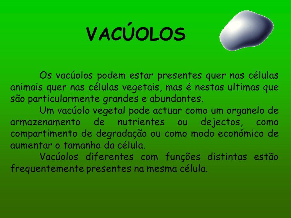 VACÚOLOS