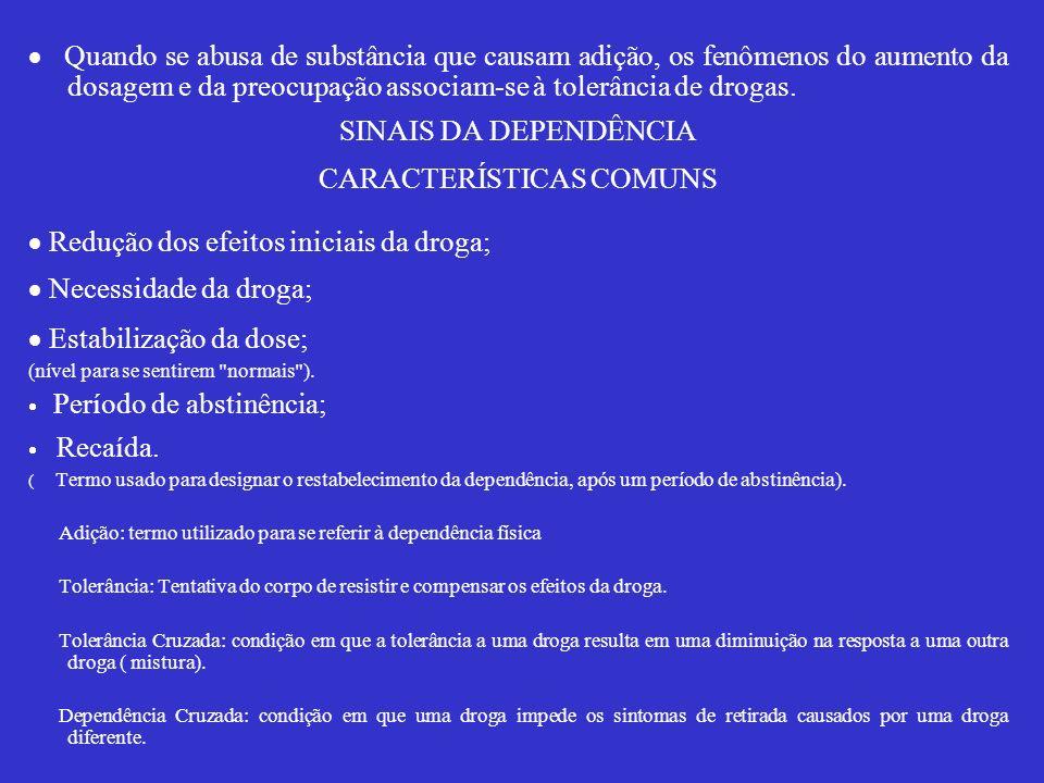 CARACTERÍSTICAS COMUNS