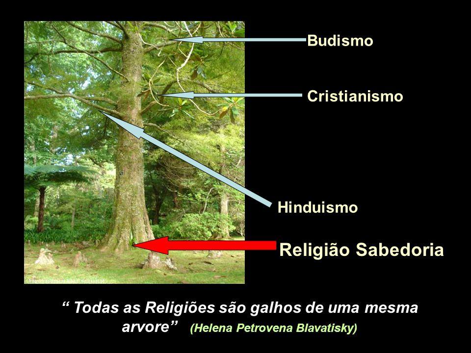 Religião Sabedoria Budismo Cristianismo Hinduismo