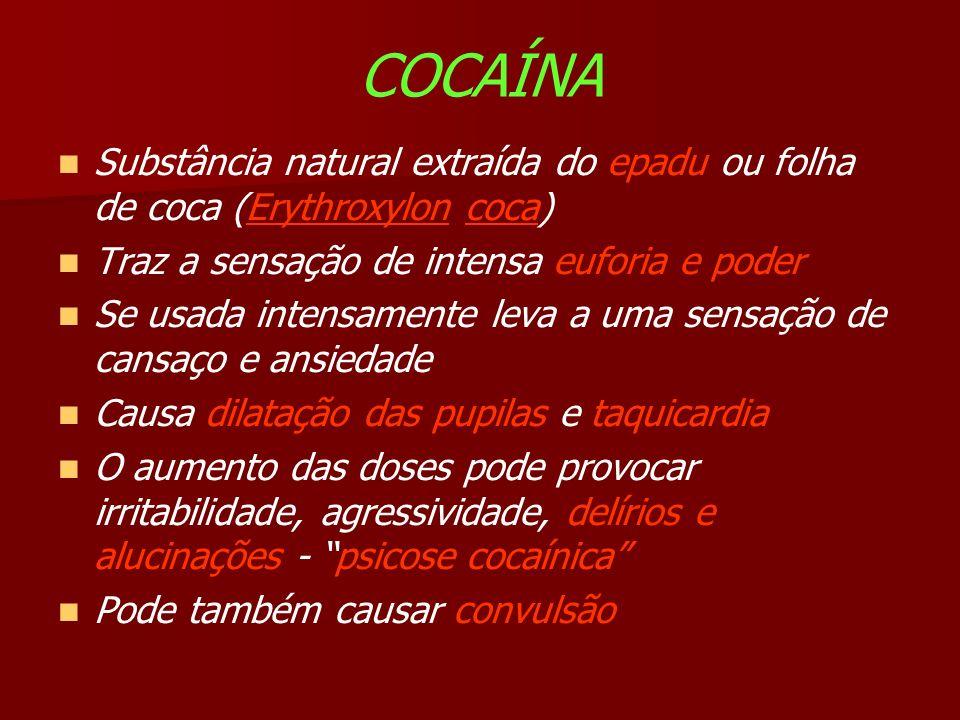 COCAÍNA Substância natural extraída do epadu ou folha de coca (Erythroxylon coca) Traz a sensação de intensa euforia e poder.