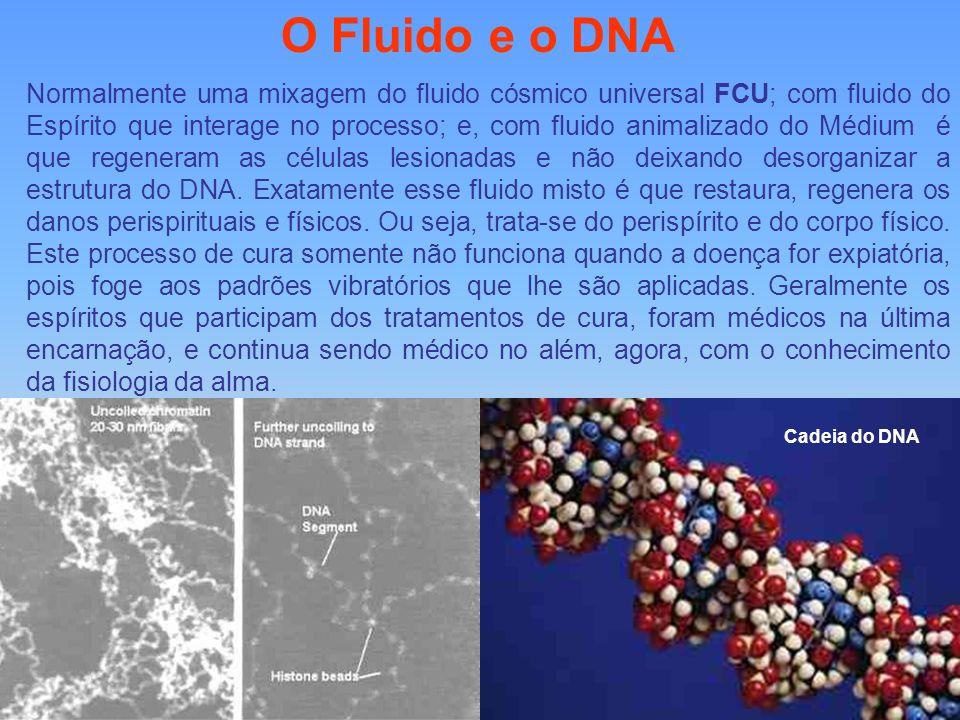 O Fluido e o DNA