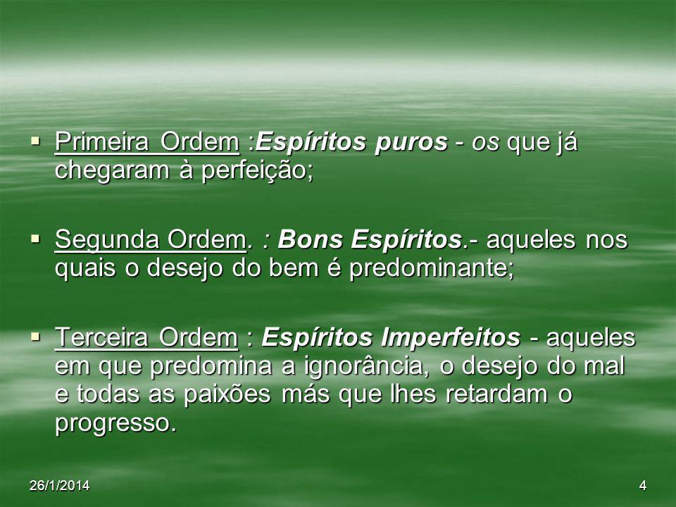 Primeira Ordem :Espíritos puros - os que já chegaram à perfeição;