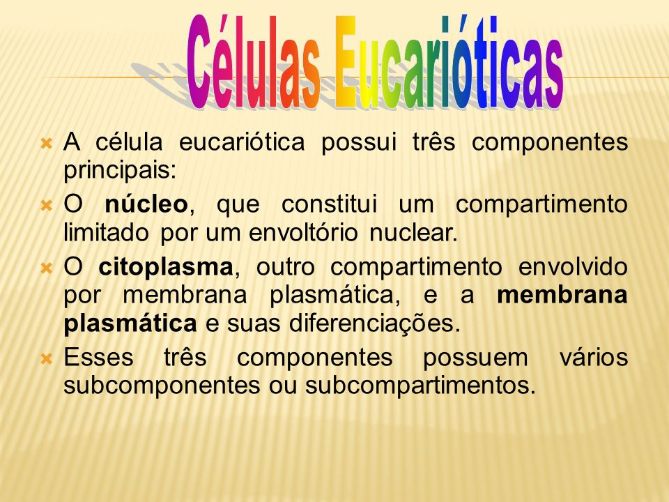 Células Eucarióticas A célula eucariótica possui três componentes principais: