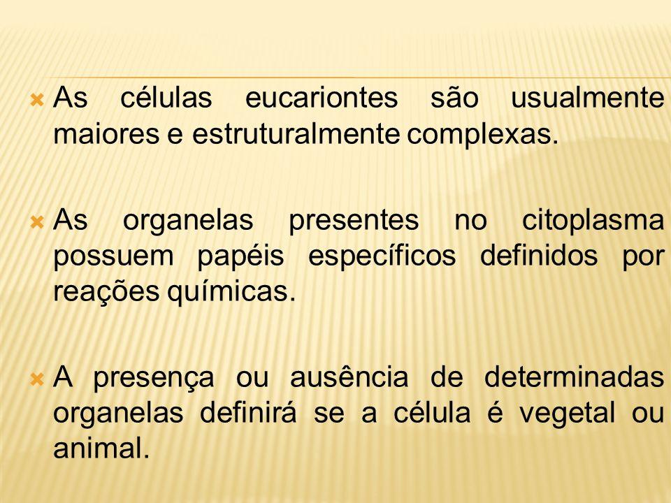 As células eucariontes são usualmente maiores e estruturalmente complexas.