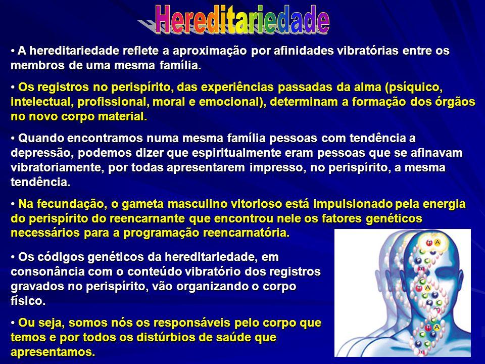 Hereditariedade A hereditariedade reflete a aproximação por afinidades vibratórias entre os membros de uma mesma família.