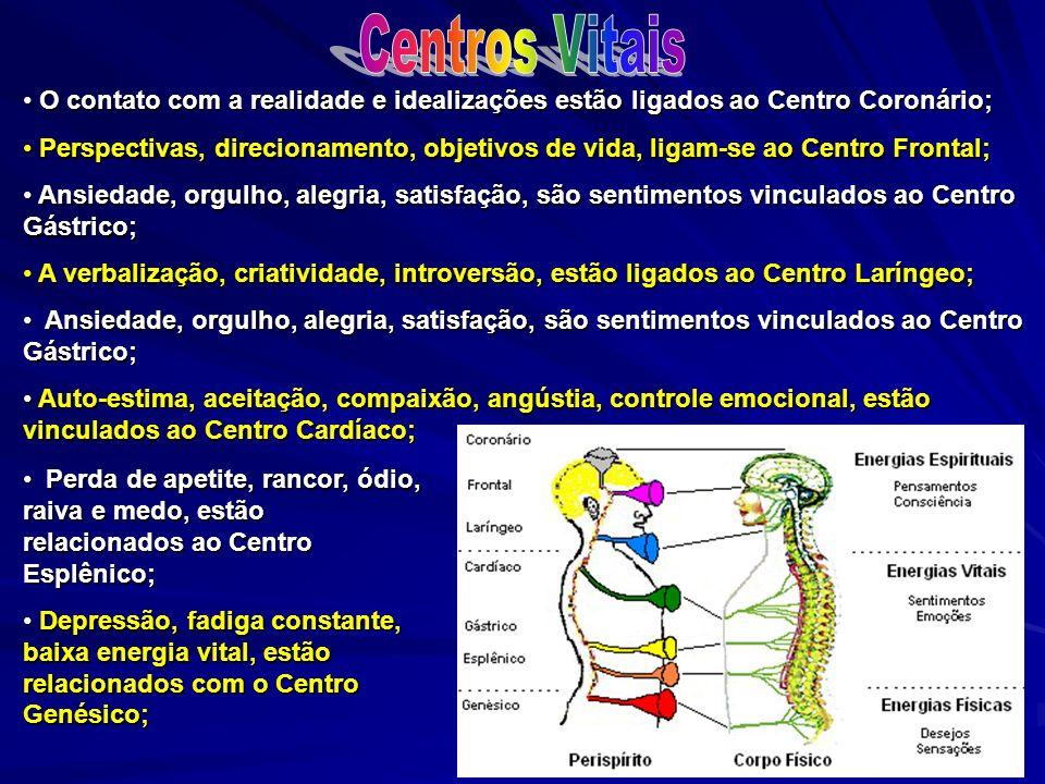 Centros Vitais O contato com a realidade e idealizações estão ligados ao Centro Coronário;