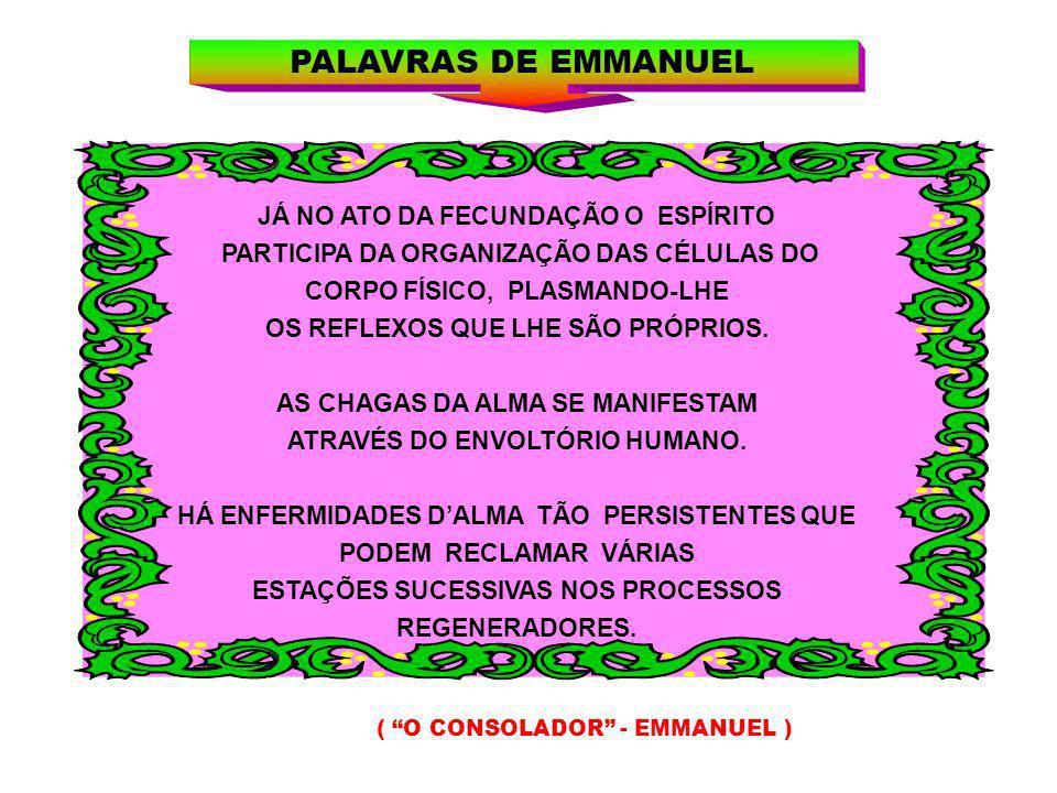 PALAVRAS DE EMMANUEL JÁ NO ATO DA FECUNDAÇÃO O ESPÍRITO