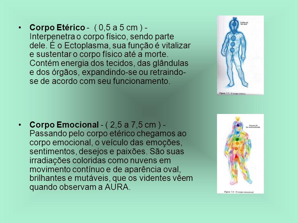 Corpo Etérico - ( 0,5 a 5 cm ) - Interpenetra o corpo físico, sendo parte dele. É o Ectoplasma, sua função é vitalizar e sustentar o corpo físico até a morte. Contém energia dos tecidos, das glândulas e dos órgãos, expandindo-se ou retraindo-se de acordo com seu funcionamento.
