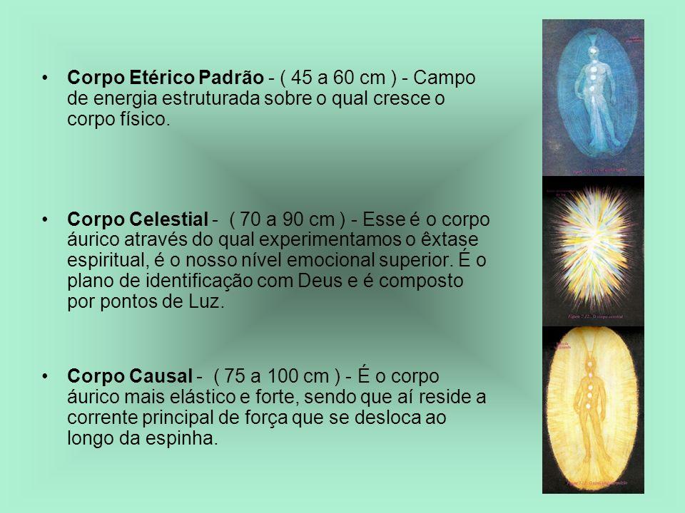 Corpo Etérico Padrão - ( 45 a 60 cm ) - Campo de energia estruturada sobre o qual cresce o corpo físico.
