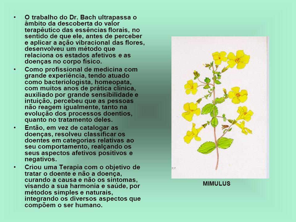 O trabalho do Dr. Bach ultrapassa o âmbito da descoberta do valor terapêutico das essências florais, no sentido de que ele, antes de perceber e aplicar a ação vibracional das flores, desenvolveu um método que relaciona os estados afetivos e as doenças no corpo físico.