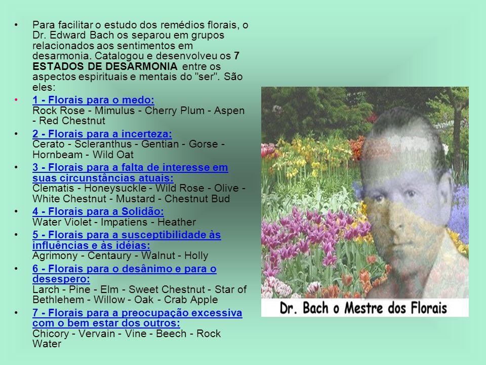 Para facilitar o estudo dos remédios florais, o Dr