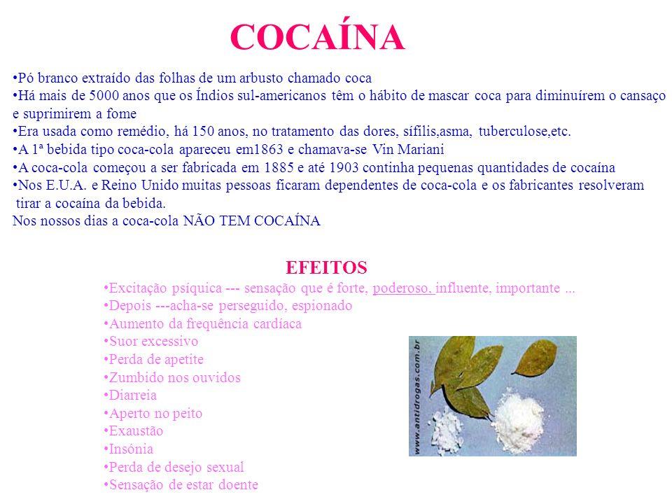 COCAÍNA Pó branco extraído das folhas de um arbusto chamado coca.