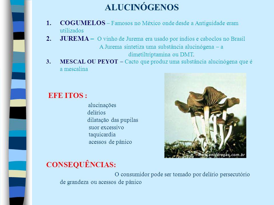 ALUCINÓGENOS EFE ITOS : alucinações CONSEQUÊNCIAS: