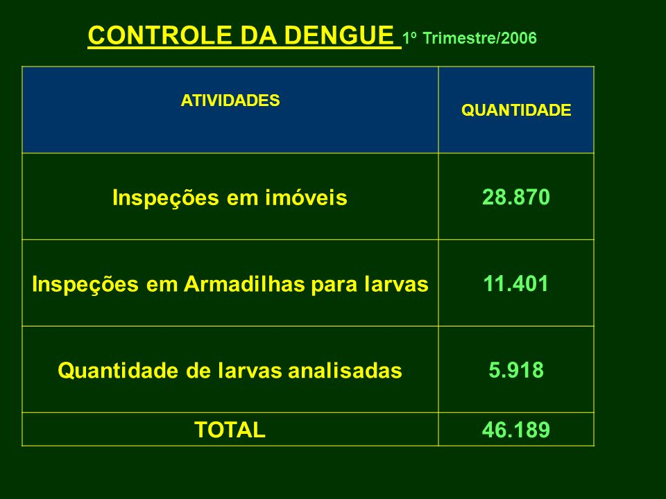 CONTROLE DA DENGUE 1º Trimestre/2006