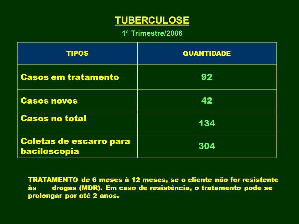 TUBERCULOSE Casos em tratamento 92 Casos novos 42 Casos no total 134
