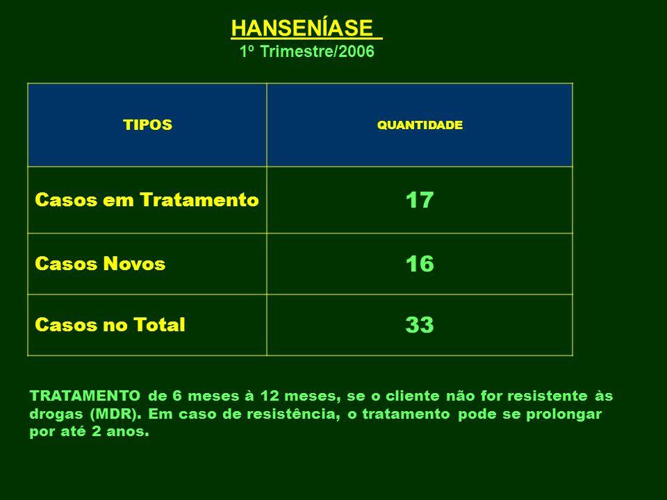 HANSENÍASE 17 16 33 Casos em Tratamento Casos Novos Casos no Total