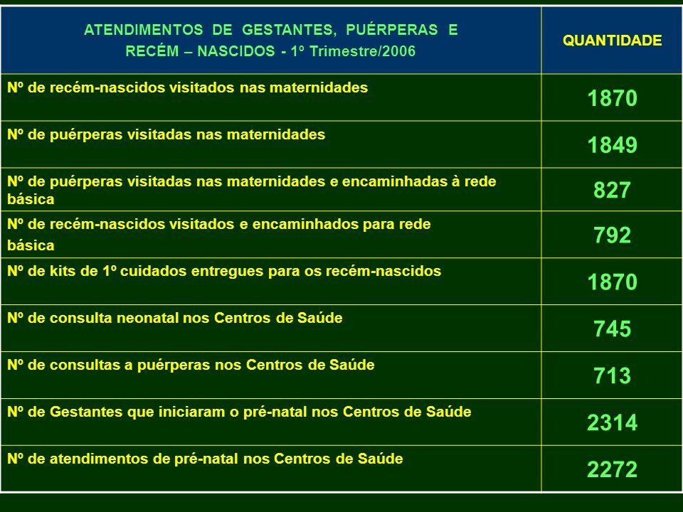 ATENDIMENTOS DE GESTANTES, PUÉRPERAS E