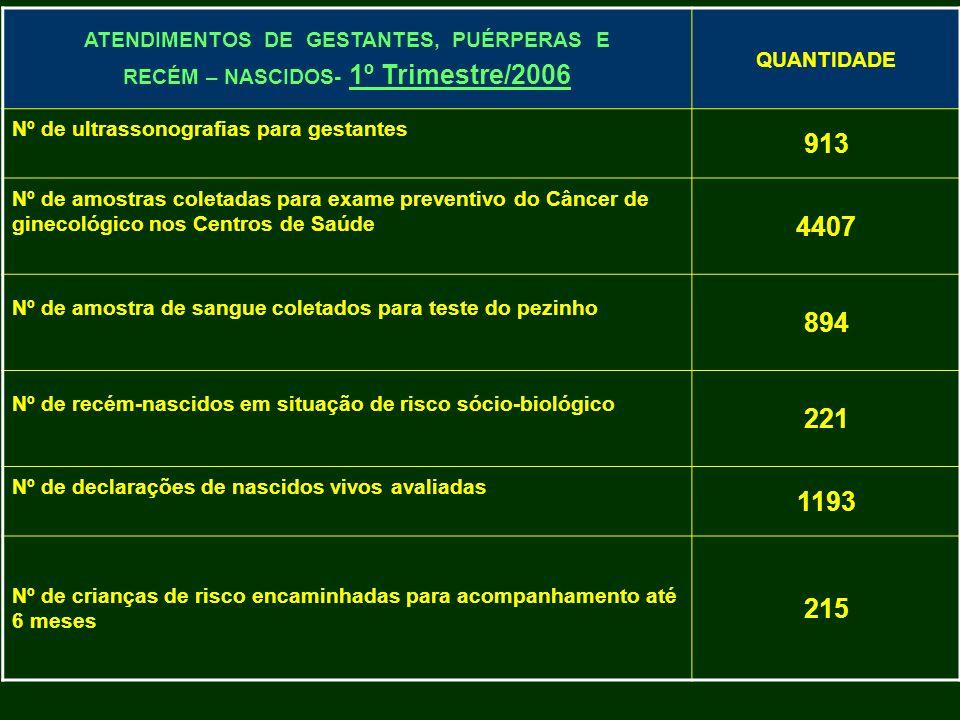 913 4407 894 221 1193 215 ATENDIMENTOS DE GESTANTES, PUÉRPERAS E