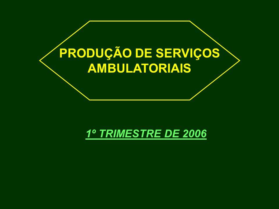 PRODUÇÃO DE SERVIÇOS AMBULATORIAIS