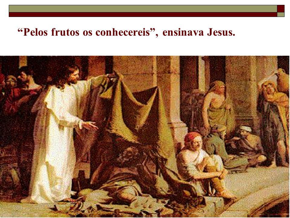 Pelos frutos os conhecereis , ensinava Jesus.