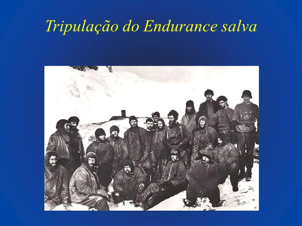 Tripulação do Endurance salva