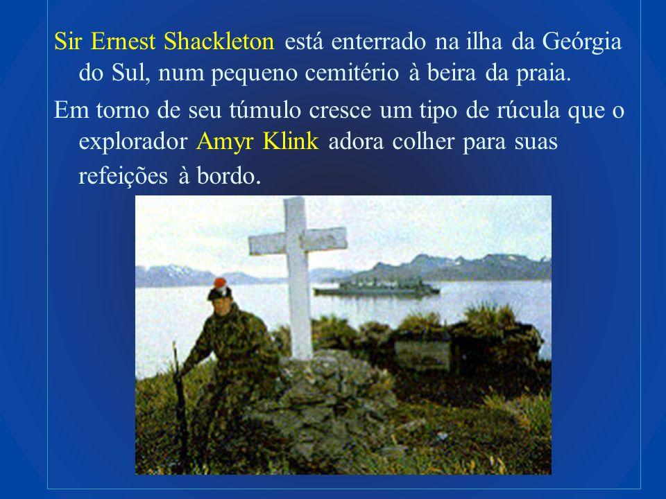 Sir Ernest Shackleton está enterrado na ilha da Geórgia do Sul, num pequeno cemitério à beira da praia.