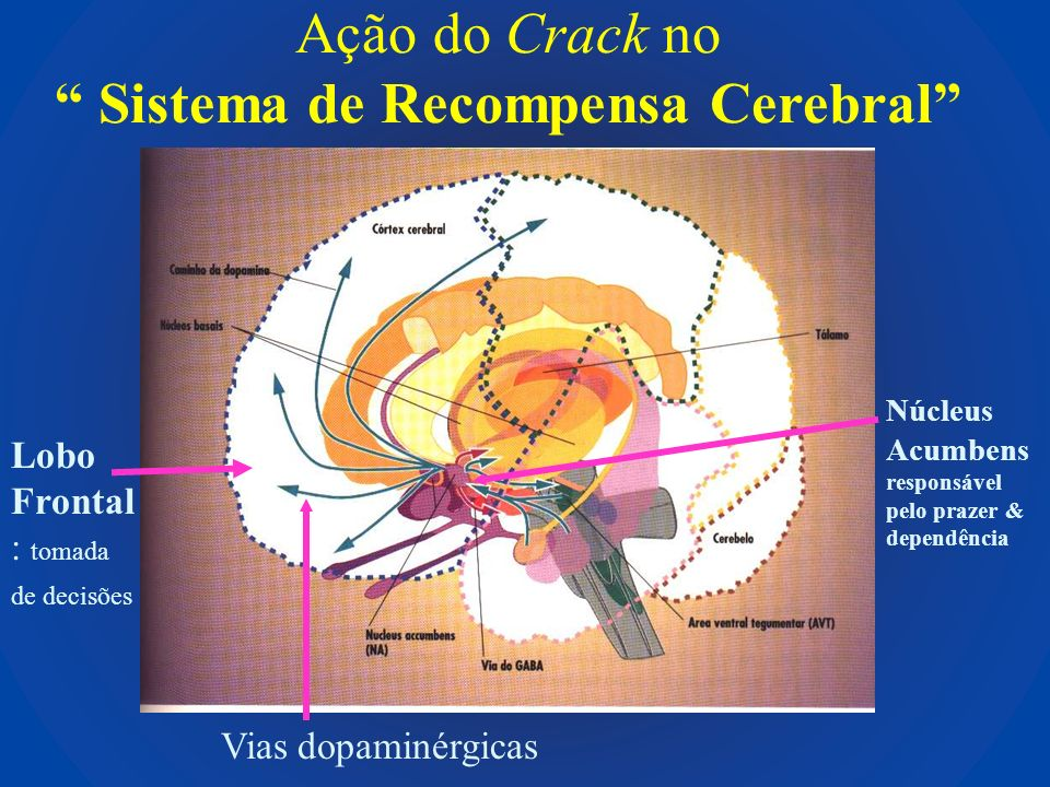 Ação do Crack no Sistema de Recompensa Cerebral