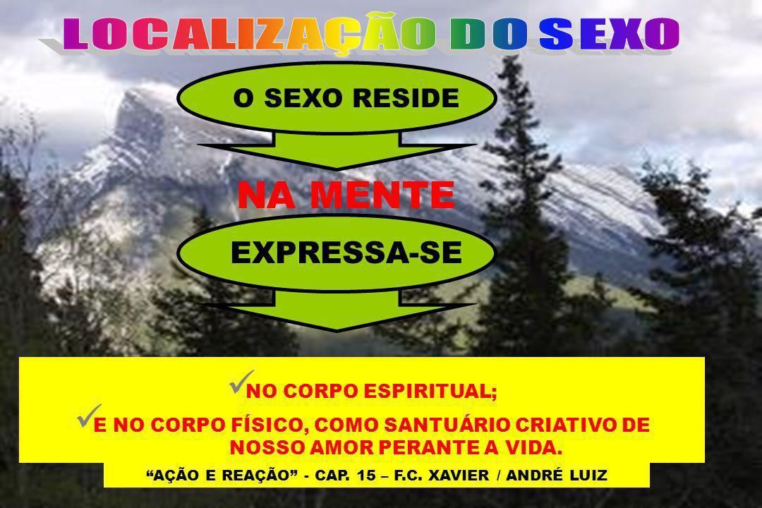 AÇÃO E REAÇÃO - CAP. 15 – F.C. XAVIER / ANDRÉ LUIZ