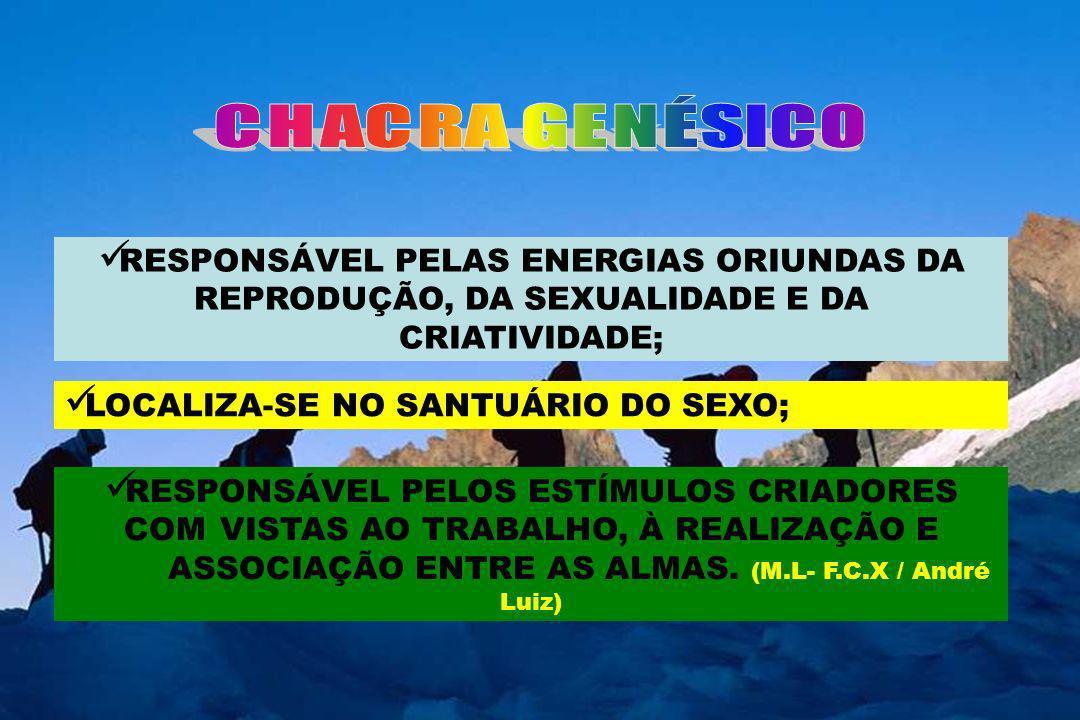 CHACRA GENÉSICORESPONSÁVEL PELAS ENERGIAS ORIUNDAS DA REPRODUÇÃO, DA SEXUALIDADE E DA CRIATIVIDADE;