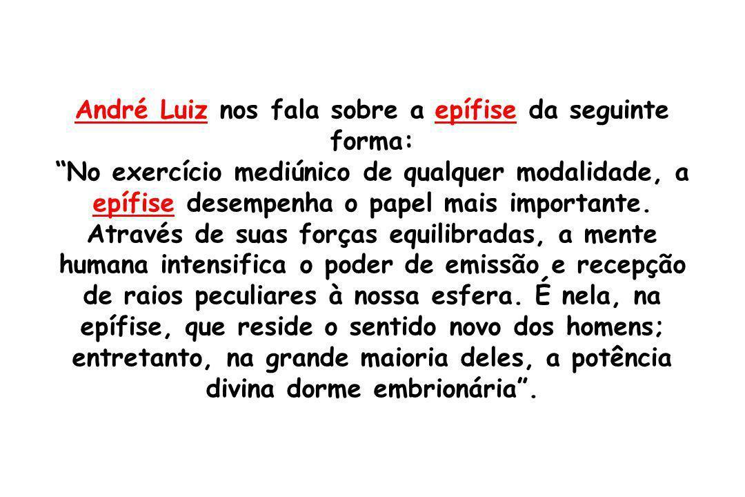 André Luiz nos fala sobre a epífise da seguinte forma: