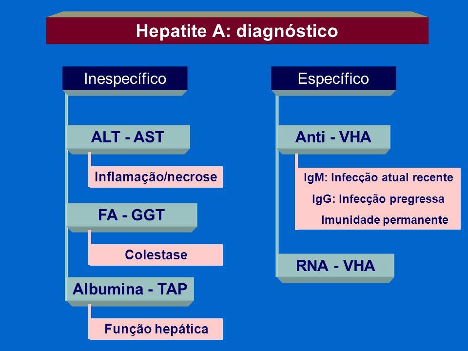 Hepatite A: diagnóstico