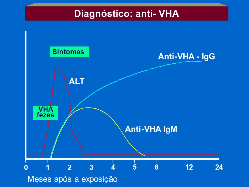 Diagnóstico: anti- VHA