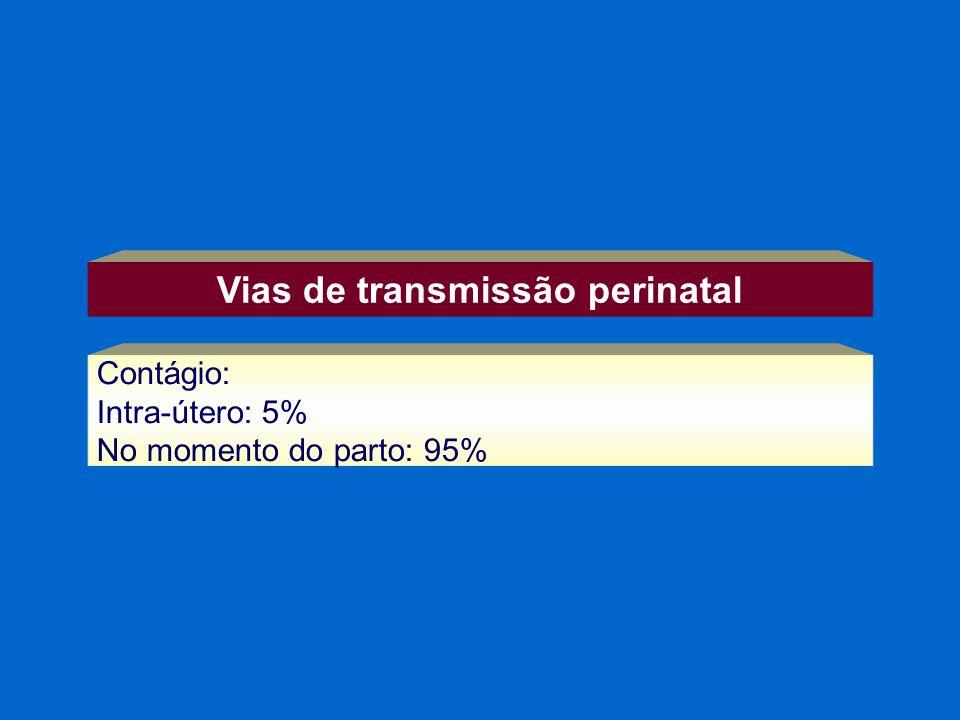 Vias de transmissão perinatal