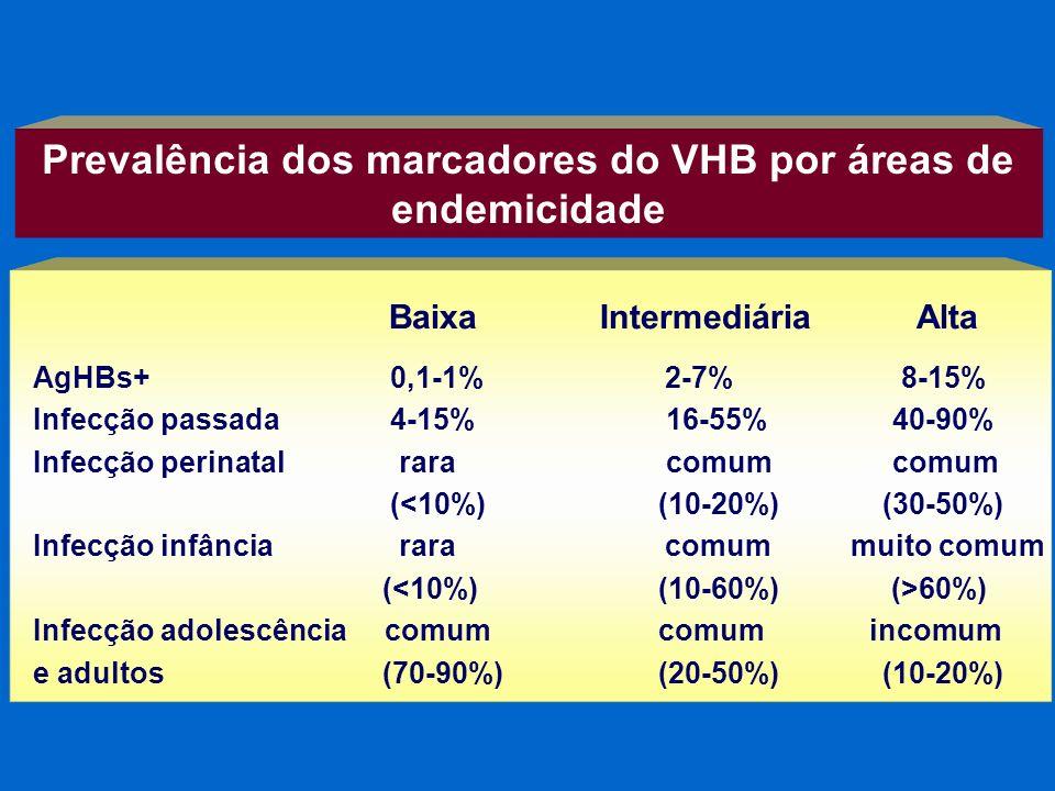 Prevalência dos marcadores do VHB por áreas de endemicidade