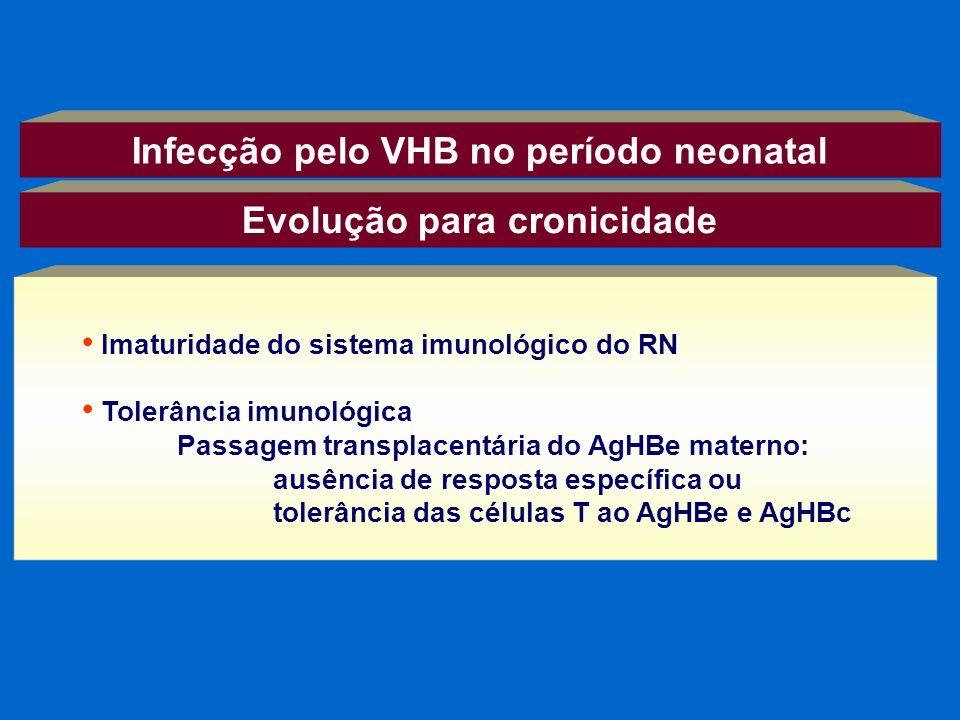 Infecção pelo VHB no período neonatal Evolução para cronicidade