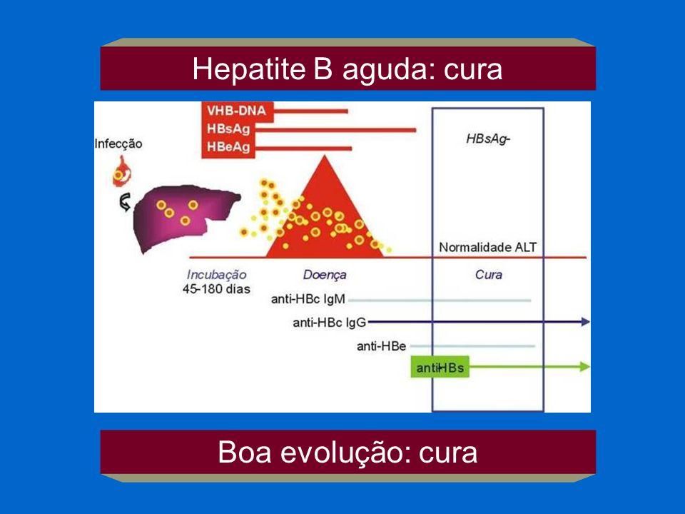 Hepatite B aguda: cura Boa evolução: cura