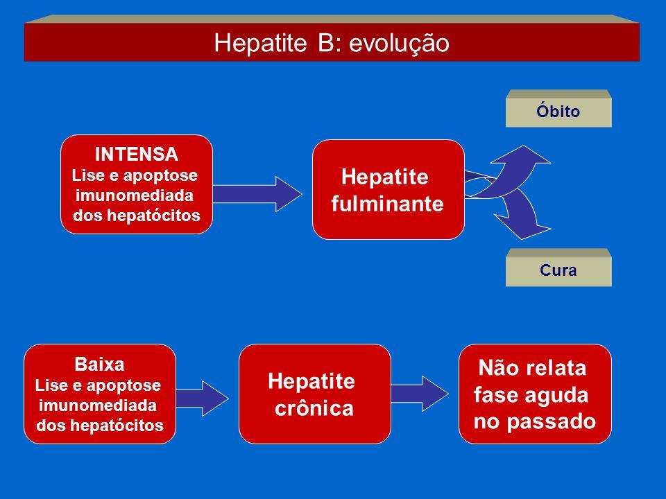 Hepatite B: evolução Hepatite fulminante Não relata Hepatite