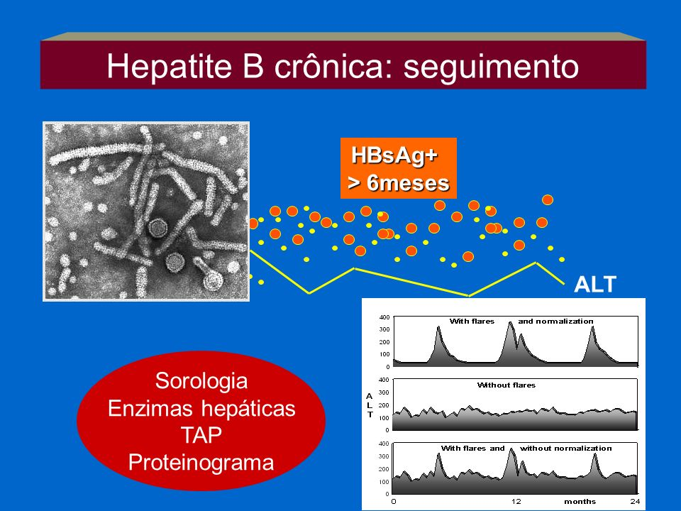 Hepatite B crônica: seguimento