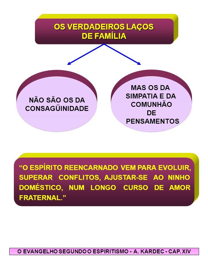 O EVANGELHO SEGUNDO O ESPIRITISMO - A. KARDEC - CAP. XIV
